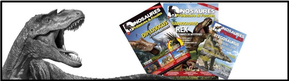 MAGAZINES DINOSAUR FRENCH VERSIONS